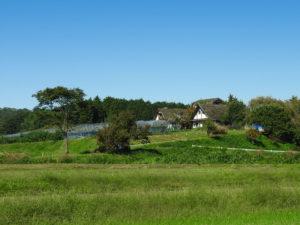 星の見える丘農園